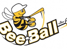 BeeBall Clinic in Sweden