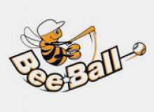 Organize your national beeball day